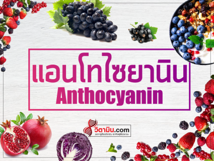 Anthocyanin-antioxident