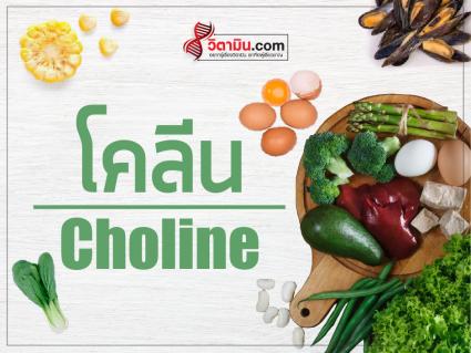 Choline-minerals