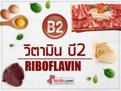 VitaminB2-cover